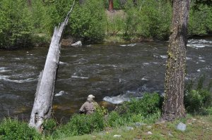 Gary Fly Fishing on Rock Creek, Montana