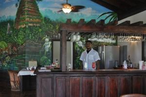 Inside the Temple Run Tavern