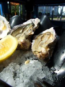 Yummy..raw oysters