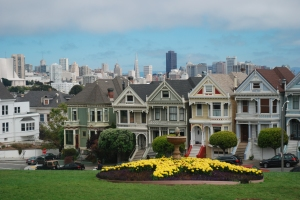 "Not the ""Painted Ladies"" you were expecting?"