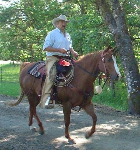 meridingcowboy